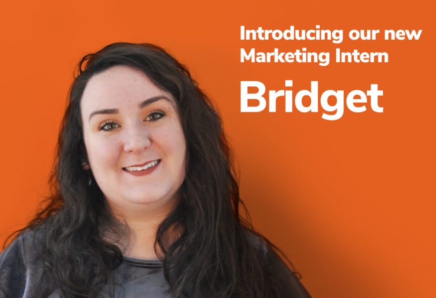 Bridget's introductory image